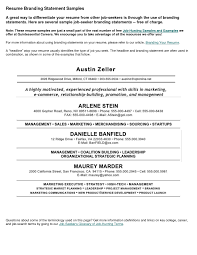 Examples Of Resumes by Example Of An Excellent Resume