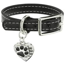 remembrance charms never leave my heart remembrance bracelet the animal rescue site