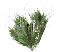 hiawatha evergreens fresh evergreen products