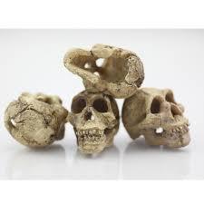 aliexpress com buy halloween aquarium decorative resin skull