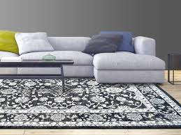 Home Decorators Collection Rugs Area Rugs Inspiring Living Room Shag Rug Living Room Shag Rug