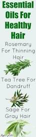 best 25 oil for hair ideas on pinterest natural oils for hair
