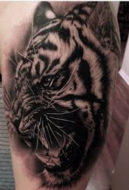 amazing tattoo design concepts black and grey tiger tattoo for men