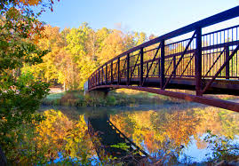 virginia state parks map see stunning fall foliage at these 14 virginia state parks