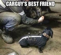 Car Repair Meme - 21 best car memes images on pinterest car memes cars and car girls