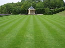 grass garden designs garden design ideas without grass the garden