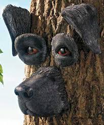 tree face black lab tree face lab love pinterest tree faces black