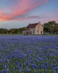 bluebonnet house april sunset 2 marble falls images from texas