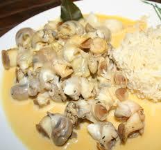 cuisiner des bulots cuire les bulots ou buccins du cotentin amafacon