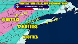 Winter Storm Meme - winter storm stella wine imgflip