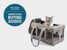 California How To Travel With A Cat images The best cat carriers you can buy business insider png