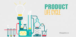 product life cycle free template infographic template gifographics