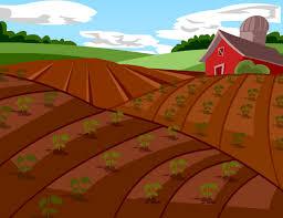 soil lesson plans and lesson ideas brainpop educators