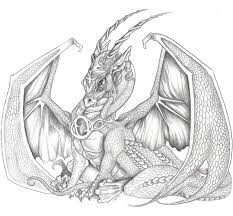576 dragons black u0026 white images unicorns