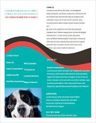brochure template ms word non profit microsoft office templates