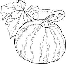 vegetable coloring pages vegetable coloring pages for preschool