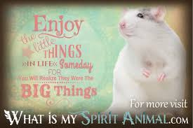 quotes about friends you can rely on rat mouse quotes u0026 sayings animal quotes u0026 sayings
