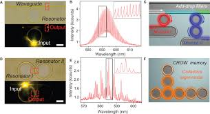 organic printed photonics from microring lasers to integrated