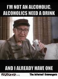 Whats An Internet Meme - i m not an alcoholic alcoholics need a drink and i already have
