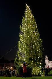 is this the world u0027s ugliest christmas tree travel leisure