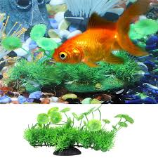 popular free fish aquarium buy cheap free fish aquarium lots from