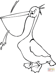 pelican 22 coloring page free printable coloring pages