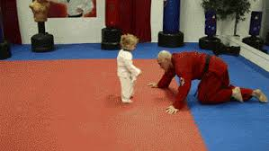 imagenes gif karate karate gifs get the best gif on giphy