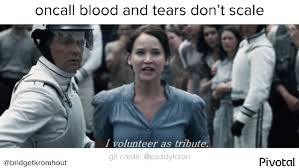I Volunteer As Tribute Meme - list of synonyms and antonyms of the word i volunteer