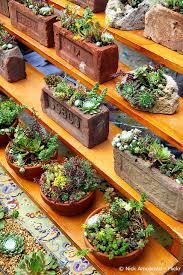 garten balkon gardening für ihr zuhause garten gestalten für balkon und