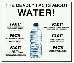 All About Meme - deadly facts about water meme guy