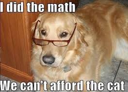 Lawyer Dog Meme - funny dog memes i top 50 of all time i world wide interweb
