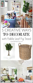 5 creative ways to decorate with fiddle leaf fig trees setting for