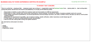 business analyst work experience certificate