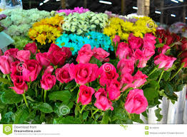 flowers for sale flowers for sale at market stock photo image of europe 35143250