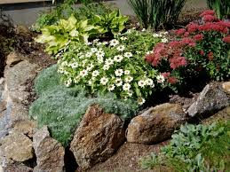 25 best rock garden images on pinterest gardens rockery garden