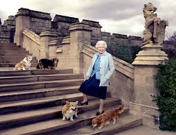 queen s dogs queen elizabeth ii poses with grandkids for 90th birthday