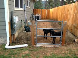 backyard ideas for dogs backyard fence ideas for dogs