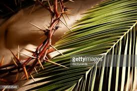 palm branches for palm sunday palm sunday kjv bible and palms branches stock photo getty images