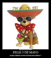 5 De Mayo Memes - 5 de mayo memes 28 images corona cupcakes little moments of