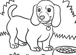 dog and puppy coloring pages puppy coloring pages u0026 printables education com