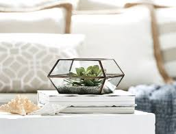 glass prism terrariums
