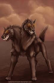 cerberus 3 headed dog spirit halloween cerberus in greek and roman mythology is a multi headed hound