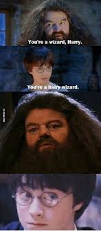 Harry Potter Firetruck Meme - 25 best memes about your a wizard your a wizard memes