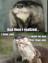 Funny Love You Meme - and then i realized i love you i want no one otter than you funny love