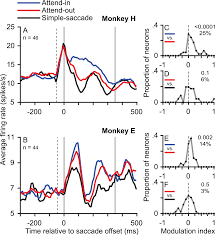 an attention sensitive memory trace in macaque mt following