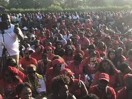 chamisa upsets non shona speakers in uk bulawayo24 news