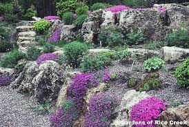 unique rock garden mn rock garden mn alices garden gardensdecor com