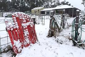 thick snow blankets parts of southern queensland in what could be