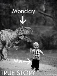 Funny Memes About Monday - 20 monday memes thug life meme