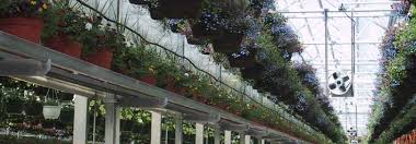 greenhouse thermostat fan control dramm environmental controls